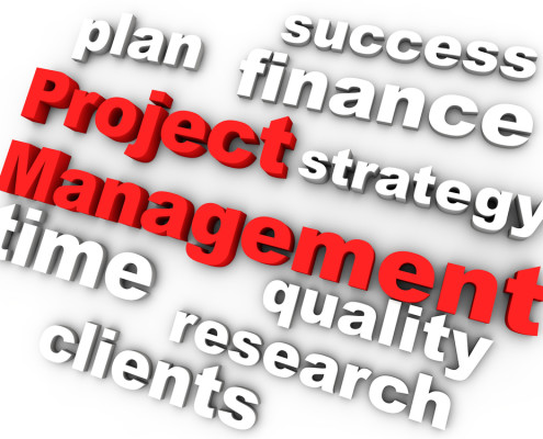 project management consulting 5 hr